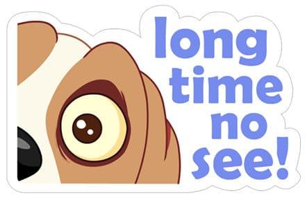 long_time_no_see